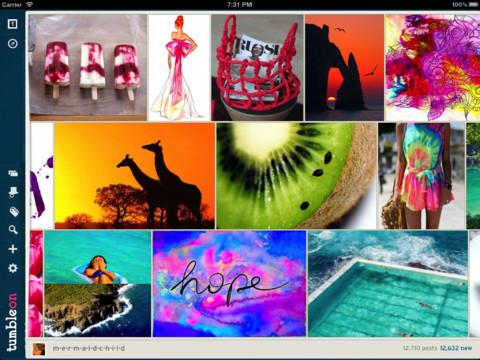 http://ipad.appfinders.com/wp-content/uploads/2013/05/tumbleon.jpg