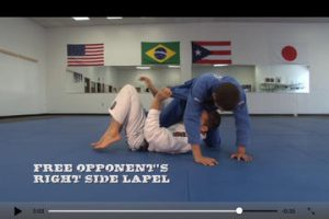 BJJ Sweeps for iPad