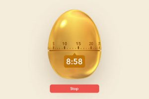 Filibaba Egg Timer for iPad