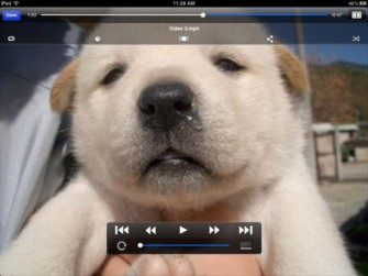 VDownload Plus: Video Downloader for iPad